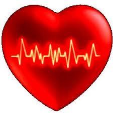 2. Metteteci tutto il vostro cuore...