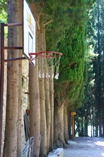 Krca, basket come religion