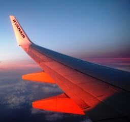 Weekly Photo Challenge - Orange Back from London
