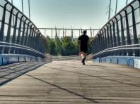 Il ponte strallato