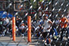 Playground - The Cage