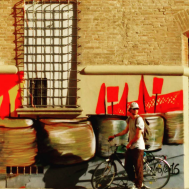 Bologna - Graffiti, Finestra e Ciclista