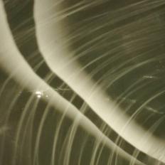 Spinea - Tempesta in un lavandino